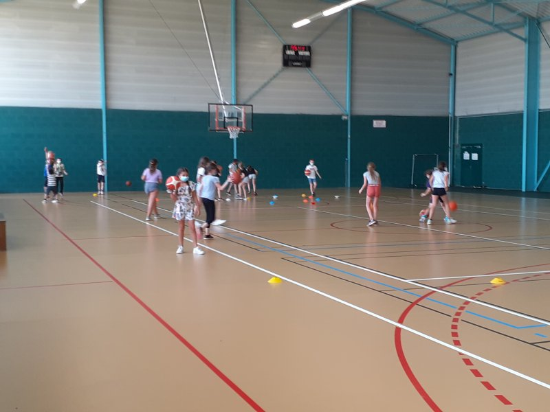 basketecolestandregouledoie3
