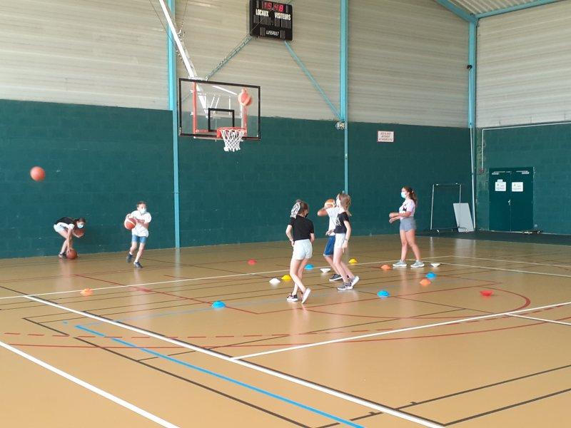 basketecolestandregouledoie4